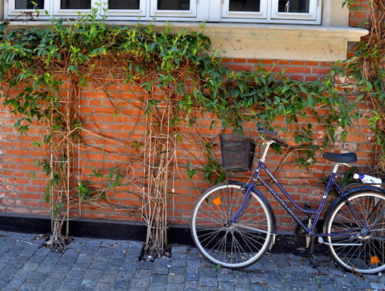 Cycling in Copenhagen: Routes & Guide